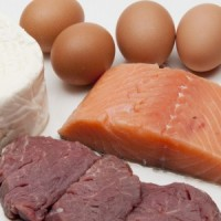 protein-is-an-essential-part-of-every-athlete-s-diet-_16001173_800888421_1_0_14040431_300-200x200